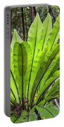 Bold Fronds 8 Portable Battery Charger