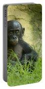 Bonobo Tyke Portable Battery Charger