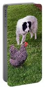 Border Collie Herding Chicken Portable Battery Charger
