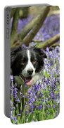 Border Collie In Bluebells Uk Portable Battery Charger