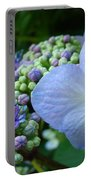 Botanical Garden Blue Hydrangea Flowers Baslee Troutman Portable Battery Charger