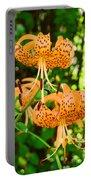 Botanical Master Gardens Art Prints Orange Tiger Lilies Baslee Troutman Portable Battery Charger