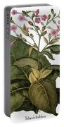 Botany: Tobacco Plant Portable Battery Charger