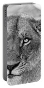 Botswana  Lioness In Black And White Portable Battery Charger