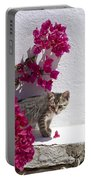 Bougainvillaea Tabby Portable Battery Charger