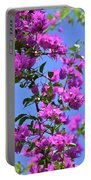 Bougainvillea And Sky Portable Battery Charger