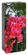Bougainvillea On Southern Fence Portable Battery Charger