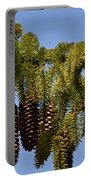 Boughs Of Pine Cones Portable Battery Charger