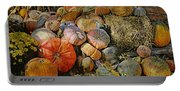 Bountiful Fall Harvest Portable Battery Charger