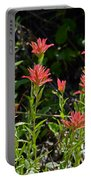 Bouquet Of Paintbrushes Portable Battery Charger