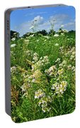 Bouquet Of Wildflowers Along Country Road In Mchenry County Portable Battery Charger