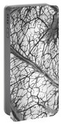 Brain Arteries And Veins Portable Battery Charger
