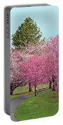 Branch Brook Cherry Blossoms II Portable Battery Charger