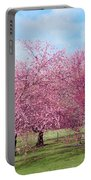 Branch Brook Cherry Blossoms Portable Battery Charger