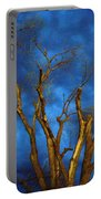 Branches Against Night Sky H Portable Battery Charger