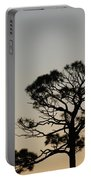 Branches In The Sunset Portable Battery Charger