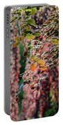 Branches Of A Tree With Colorful Leaves Shining In The Sunlight Portable Battery Charger