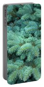 Branches Of Blue Spruce Portable Battery Charger