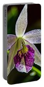 Brassocattleya Orchid Portable Battery Charger