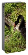 Breeding Pair Portable Battery Charger