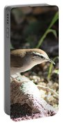 Breswick Wren On Tree Root 2 Portable Battery Charger