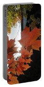Bridge In Fall Portable Battery Charger