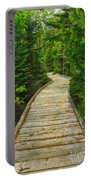 Bridge To Chimney Pond Portable Battery Charger