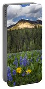 Bridger Teton National Forest Portable Battery Charger