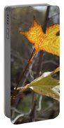 Bright And Sunlit Leaf, Arizona Portable Battery Charger