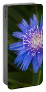 Bright Blue Aster Portable Battery Charger