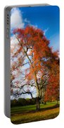 Bright Fall Colors Portable Battery Charger