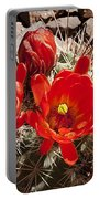 Bright Orange Cactus Blossoms Portable Battery Charger