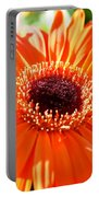 Bright Orange Gerbera  Portable Battery Charger