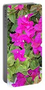 Bright Walkway Portable Battery Charger
