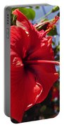 Brightly Colored Hibiscus On The Greek Island Of Mykonos  Portable Battery Charger