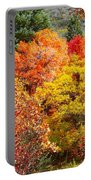 Brillant Fall Portable Battery Charger