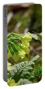 Brimstone On Cowslip Primrose Portable Battery Charger