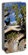 Bristlecone Great Basin Landscape Portable Battery Charger