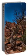 Bristlecone On Park Avenue Portable Battery Charger
