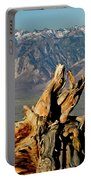 Bristlecone Pine Down Portable Battery Charger