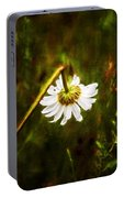 Broken Hearted Oxeye Daisy Asteraceae  Portable Battery Charger
