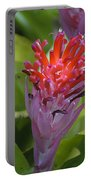 Bromeliad Flower Portable Battery Charger