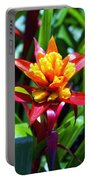 Bromeliad Portable Battery Charger