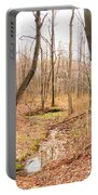 Brook In The Woods Portable Battery Charger