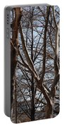 Brooklyn Bridge Thru The Trees Portable Battery Charger