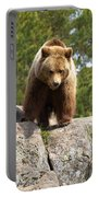 Brown Bear 3  Portable Battery Charger