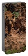 Brown Bear Watches From Steep Rocky Outcrop Portable Battery Charger