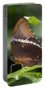 Brown Beauty Portable Battery Charger