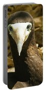 Brown Booby Portable Battery Charger