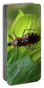 Brown Insect Portable Battery Charger